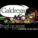 guldregn_logo